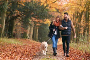 prechádzka v jesennej prírode